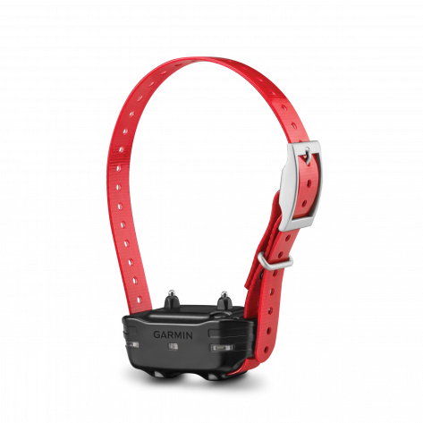 PT 10 Dog Device